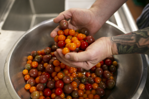 Custom grown heirloom cherry tomatoes